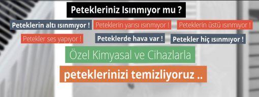 Ankara petek temizleme servisi 374 46 38